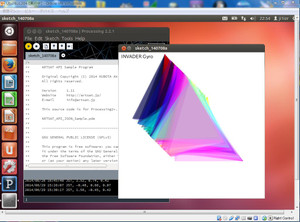 Processingonubuntu2