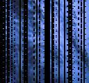 XI-V_051229_2158_ROM2